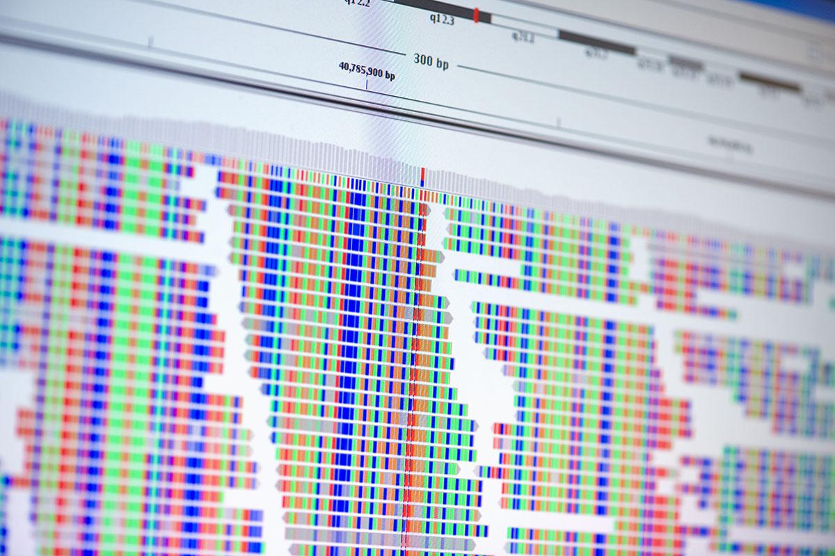 DNA arts M&G